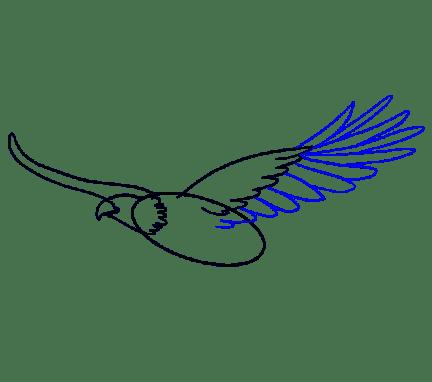 Cara Menggambar Garuda: Langkah 9