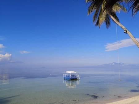 Tropical Fun Ta Sea