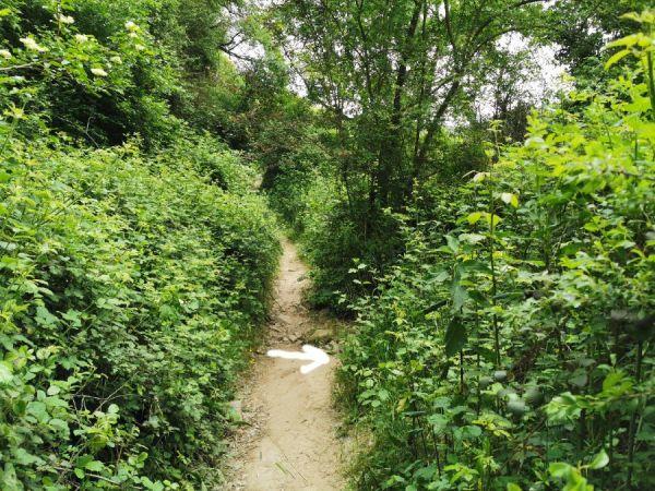 ruta hacia el salt del Cabrit