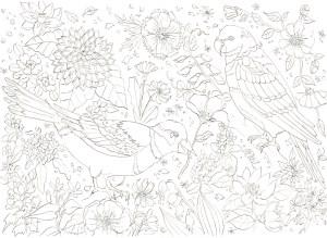 鳥と花の塗り絵