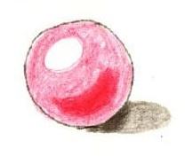 球の塗り絵見本