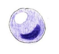 球の塗り見本