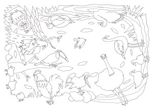 12種類の鳥が描かれた塗り絵