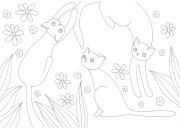 花と3匹の猫の塗り絵
