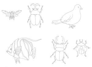 カブトムシと鳥の塗り絵