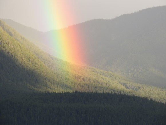Rainbow near Mount Michener, Alberta. Photo: Kevin M Klerks Rainbow