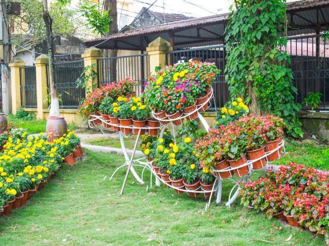 4 Tips Membuat Taman Bunga Di Rumah