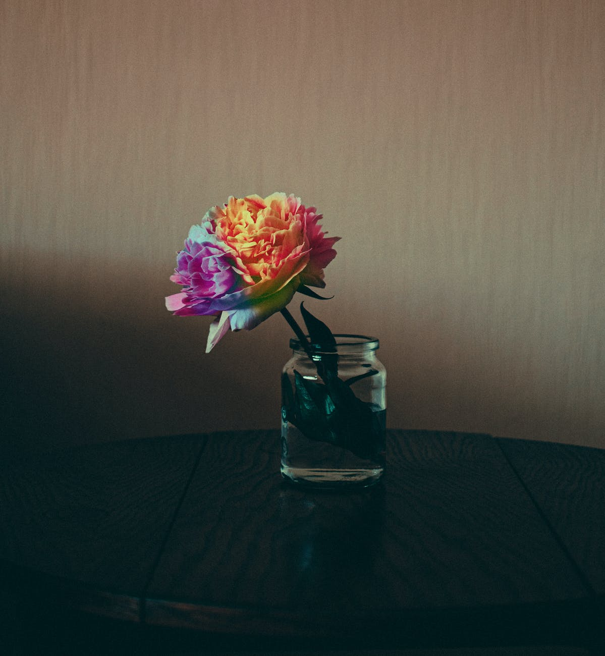 photo of rainbow colored flower in glass jar