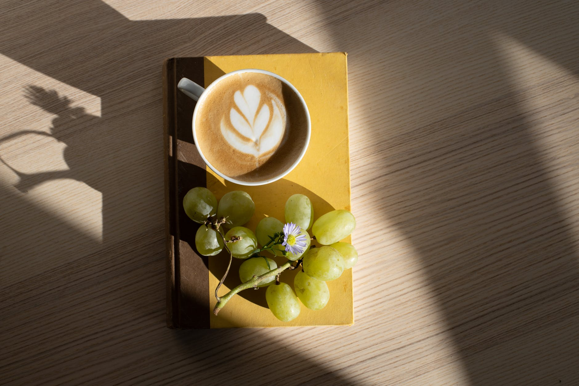 cup of cappuccino and bunch of grapes arranged on book