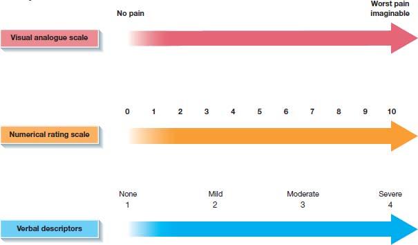 Top: managing ÒNociceptiveÓ, ÒNeuropathicÓ pain plans. Middle- ÒTotal painÓ at center connected to ÒIntensityÓ, ÒQualityÓ, ÒPsychologicalÓ, ÒSocialÓ, ÒSpiritualÓ. Bottom- three horizontal arrows depicting intensity scales: ÒVisual analogue scaleÓ, ÒNumerical rating scaleÓ, ÒVerbal descriptorsÓ.