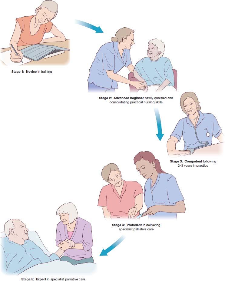 The clinical nurse specialist | Nurse Key