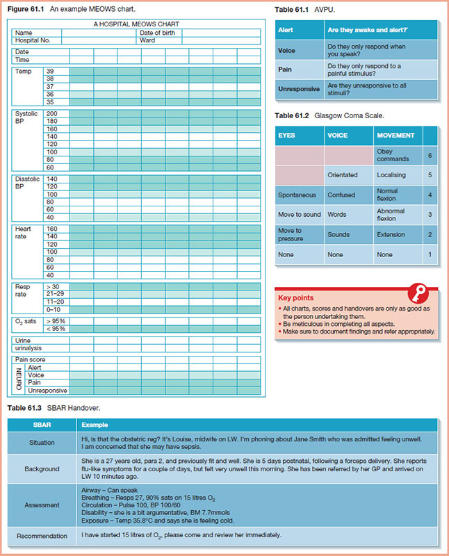 Sheet shows hospital MEOWS chart with labels for name, date of birth, hospital number, ward, data and time, and sections for temp, systolic BP, diastolic BP, heart rate, et cetera.
