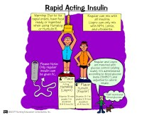 Rapid Acting Insulin