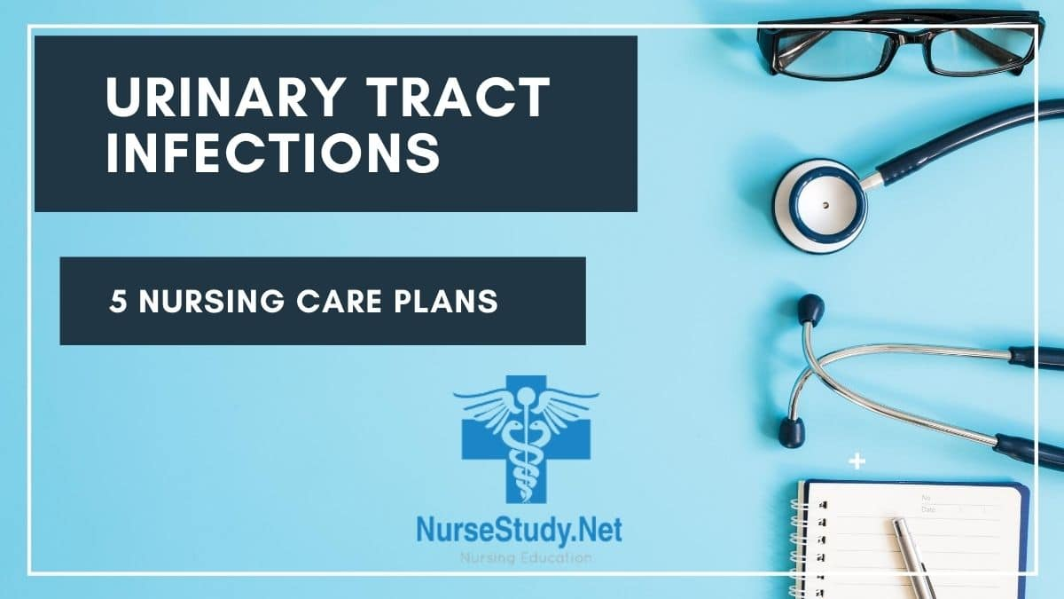 Urinary Tract Infection UTI Nursing Care Plans ...