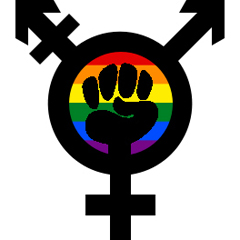 Trans History and Trans Students: Further Reflections on Teaching Transgender Issues