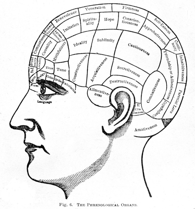 "The science of phrenology suggested different parts of the brain controlled specific traits and that analysis of the size of these different parts could reveal someone's character. This chart of ""The Phrenological Organs"" comes from 1887. (Wellcome Library no. L0001965 