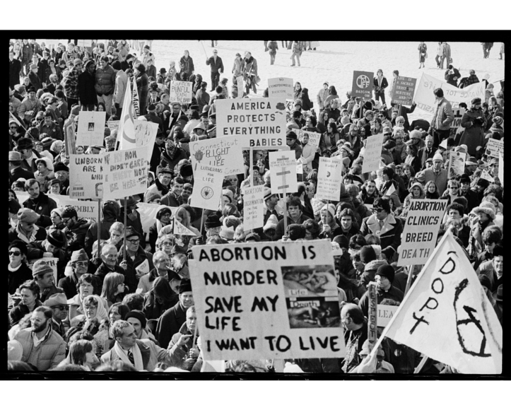 "Crowd in front of the White House holds up various signs, including ""Abortion is murder."""