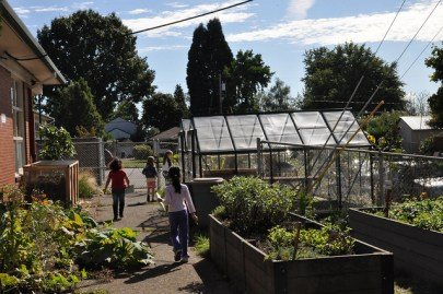 Photo of several raised beds and a greenhouse in the background. Three young children walk through the paths between the raised beds.