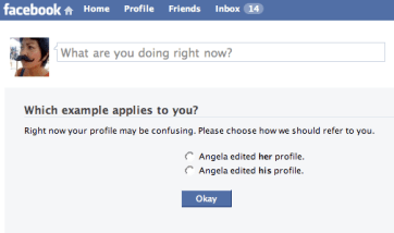 Screen shot of a Facebook page asking the user which example applies to them: Angela edited her profile; or Angela edited his profile.