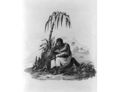 Drawing a a woman sitting under a drooping palm tree. She holds an infant in her arms.