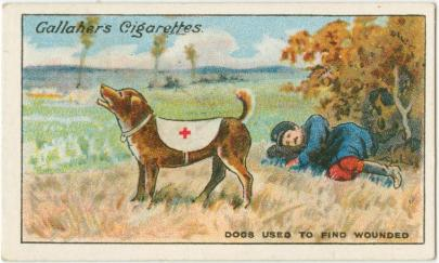 """The Joy of My Life"": Seeing-Eye Dogs, Disabled Veterans/Civilians and WWI"
