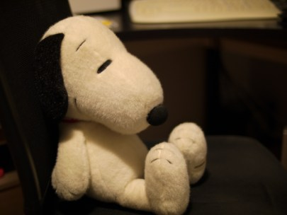Not the Doghouse: Metropolitan Life Insurance Company Archives with Snoopy!
