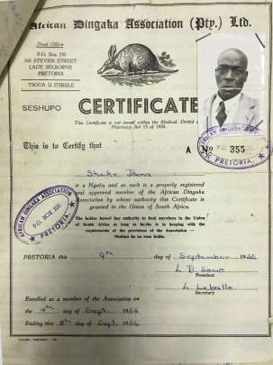 A printed certificate with the photo of a dark-skinned man in a suit and tie stapled to it. The certificate certifies that Shake Duma is a Ngaka and as such is a properly registered and approved member of the African Dingaka Association by whose authority the Certificate is granted in the Union of South Africa, 1955.