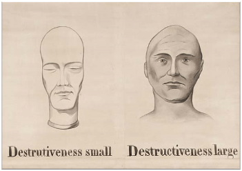"""Drawings of two heads, one marked """"destructiveness small"""" and the other """"destructiveness large"""""""
