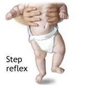 step reflex
