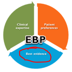 Pie chart of three EBP components with Best Evidence circled