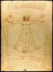 Image-by-Da-Vinci-Vitruve-Luc-Viatour