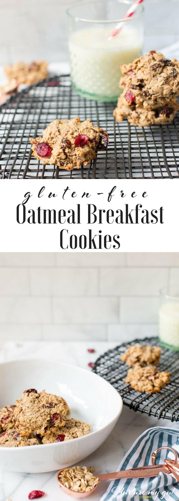 Gluten Free Oatmeal Breakfast Cookies Recipe