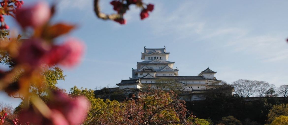 From Tokyo To Himeji