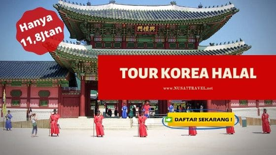 paket tour korea 2020 dari Pademangan, Jakarta