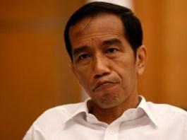 Presiden Joko Widodo/R.K Lovely's photos