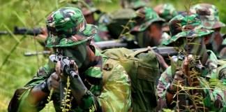 Operasi Militer TNI AD/Foto: militer.info