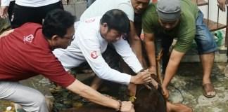 Lulung syukuran kemenangan Anies-Sandi/Foto Andika/Nusantaranews