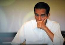 Elektabilitas Jokowi (Joko Widodo) menuju Pilpres 2019. Foto: Dok. Liputan6