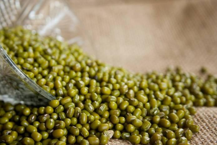 Kacang hijau atau dikenal juga dengan nama Green Gram, Goldan Gram dan Chinese Mung Bean adalah salah satu dari sekian banyak spesies yang banyak dikonsumsi di dunia. (Foto: Pixabay)