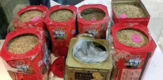 Benih padi dari China diselundupkan di Soetta (Foto: Dok. Karantina Soekarno-Hatta)