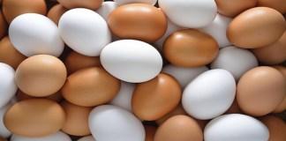 Hampir semua produk lemari pendingin bahkan menyediakan tempat tersendiri di bagian pintu untuk penyimpanan telur. (Foto: Wikimedia)