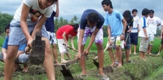 Pemuda Bertani Memajukan Negeri (Ilustrasi). Foto: Dok. Blog UMY Community
