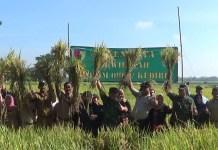 Sejumlah pejabat Kabupaten Kediri mengikuti pembukaan panen raya padi di lahan milik Kelompok Tani Mulyono di Desa Sidomulyo, Kediri, Selasa 20 Fabruari 2018. (Foto: Istimewa)