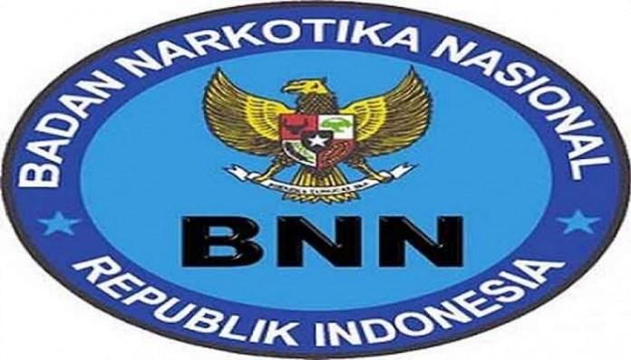 Logo Badan Narkotika Nasional (BNN). (Foto: IST)