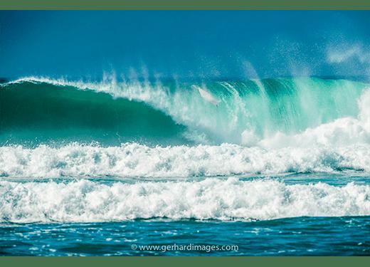 Surfing LIfe Australia Paparazzis
