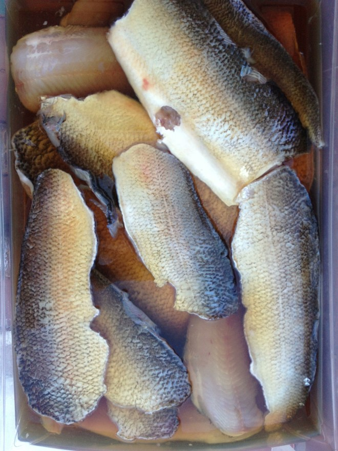 Preping whitefish for smoking