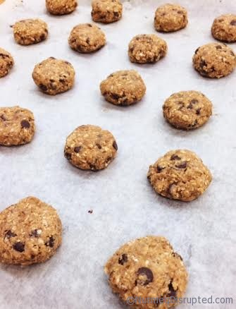 Lentil Oatmeal Chocolate Chip Cookies