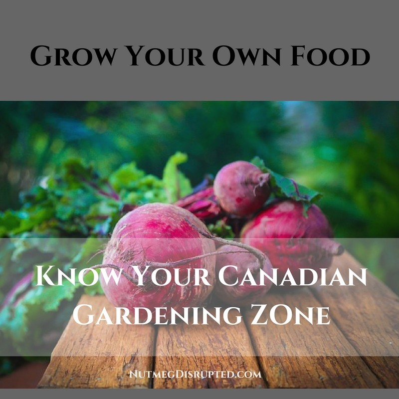 Grow Your Own Food Know Your Canadian Gardening Zone on Nutmeg Disrupted