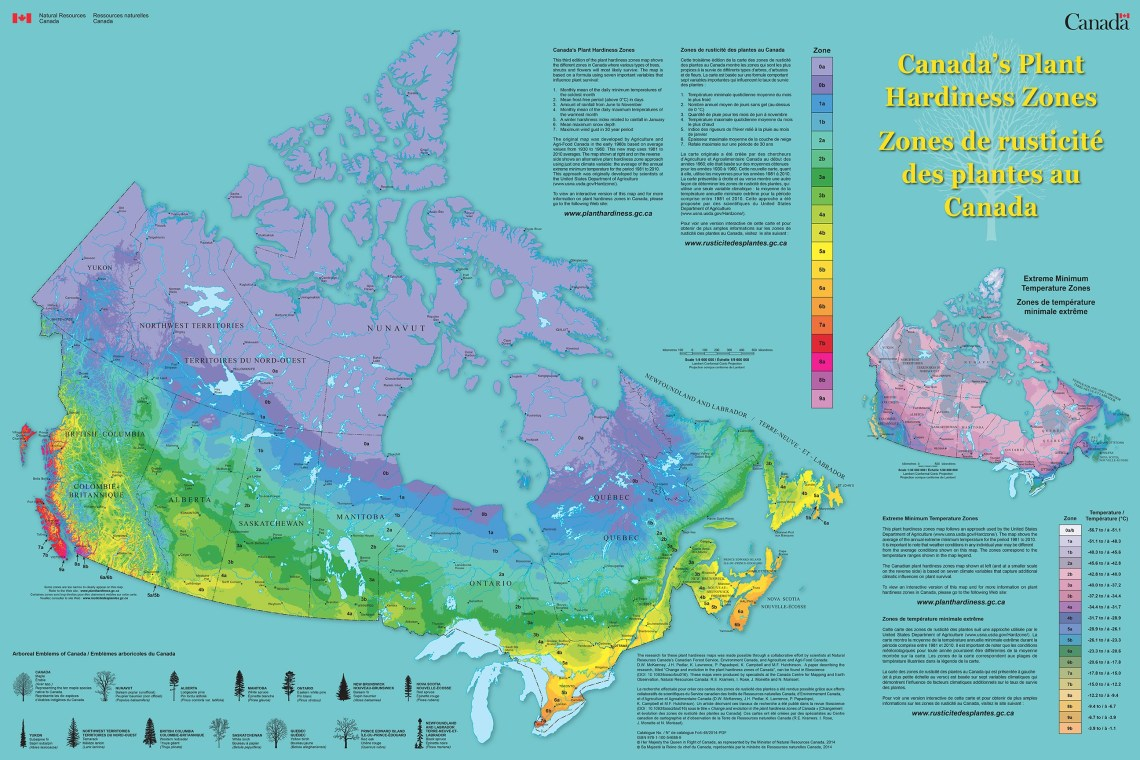 Canada Hardiness Zone Map of Nutmeg Disrupted