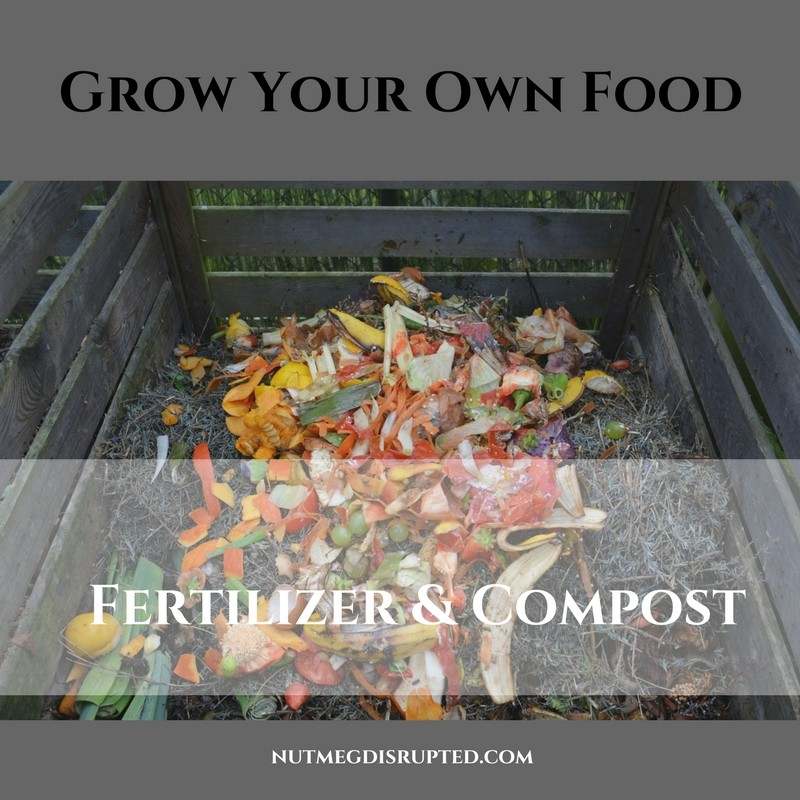 Grow Your Own Food - Fertilizer and COmpost on Nutmeg Disrupted
